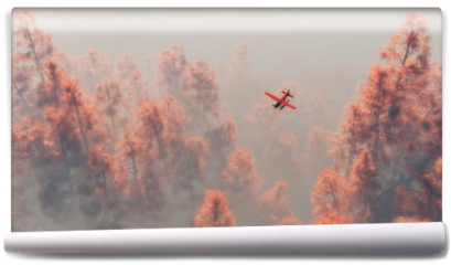 Fototapeta - Single engine airplane over autumn pines in the mist.