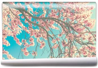 Fototapeta - Wiosenny kwiat