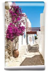 Fototapeta - Tradycyjna aleja grecka na wyspie Sifnos, Grecja