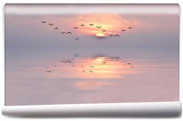 Fototapeta - amanecer de colores suaves
