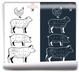 Fototapeta - American (US) Meat Cuts Diagrams
