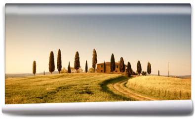 Fototapeta - Campo di Grano e Cipressi, Toscana