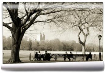Fototapeta - central park