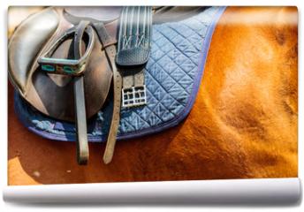 Fototapeta - Detailed close up of horse saddle with stirrup
