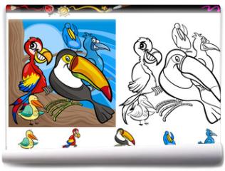 Fototapeta - exotic birds cartoon coloring page set