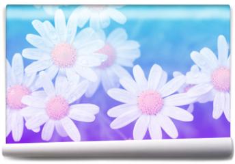 Fototapeta - Flower pastel style.