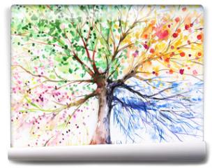 Fototapeta - Four season tree