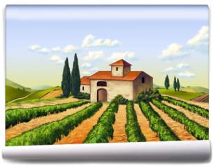 Fototapeta - Italian vineyard