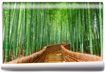 Fototapeta - Kyoto, Japan Bamboo Forest