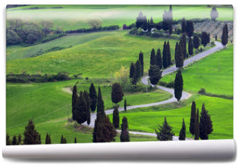 Fototapeta - landscapes