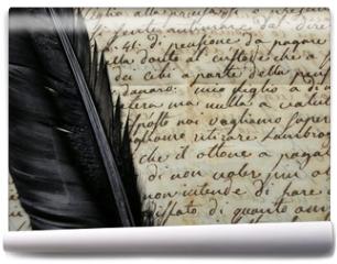 Fototapeta - Manoscritto 1