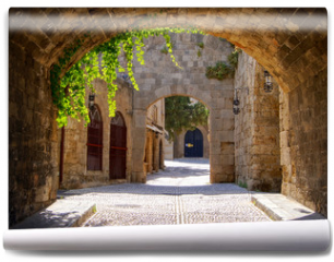 Fototapeta - Medieval arched street in the old town of Rhodes, Greece