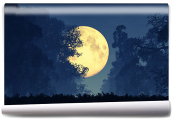 Fototapeta - Mysterious Magical Fantasy Fairy Tale Forest at Night 3D art