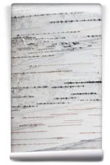 Fototapeta - Paper Birch Bark Background