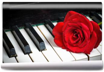 Fototapeta - piano keyboard and rose