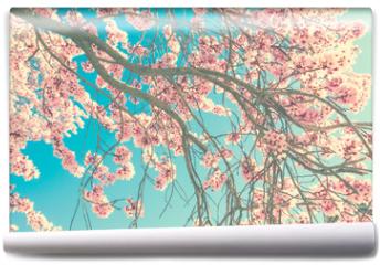 Fototapeta - Spring blossom