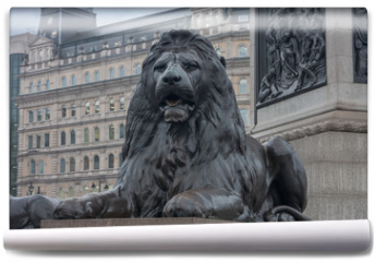 Fototapeta - Statue of Lion on Trafalgar Square in London, United Kingdom.