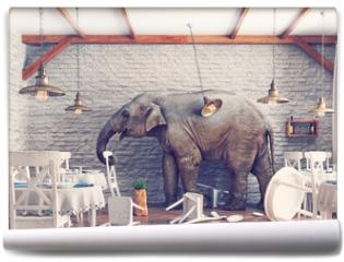 Fototapeta - The elephant  in a restaurant