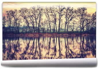 Fototapeta - Vintage toned tree silhouettes reflected in a lake.
