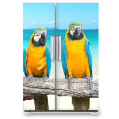 Naklejka na lodówkę - Blue and Gold Macaw on tropical beautiful beach and sea
