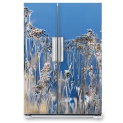 Naklejka na lodówkę - winter background landscape of grass with rime