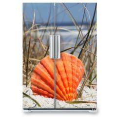 Naklejka na lodówkę - Sea shell