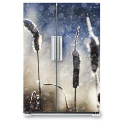 Naklejka na lodówkę - texture of the snow