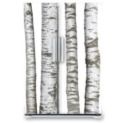 Naklejka na lodówkę - Verschiedene Birkenstämme, isoliert auf weißem hintergrund