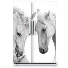 Naklejka na lodówkę - Couple of white horse on white background