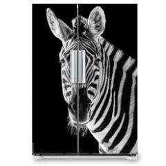 Naklejka na lodówkę - Zebra Closeup II