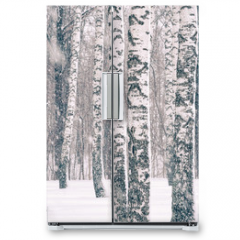 Naklejka na lodówkę - Birch forest at winter snowstorm