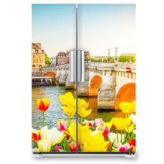 Naklejka na lodówkę - Pont Neuf, Paris, France