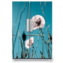 Naklejka na lodówkę - Mohnblumen Papaver rhoeas