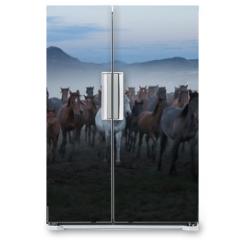 Naklejka na lodówkę - wild horses and cowboys.kayseri turkey