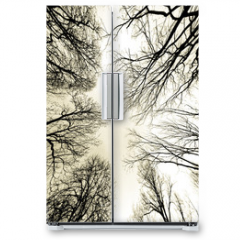 Naklejka na lodówkę - trees