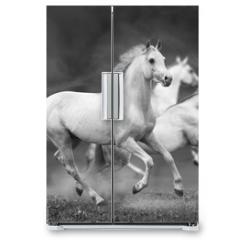 Naklejka na lodówkę - horses run