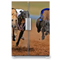 Naklejka na lodówkę - sprinting greyhounds