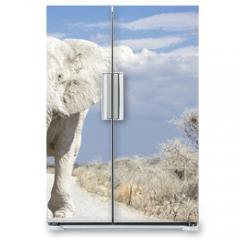 Naklejka na lodówkę - elephant road