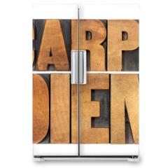 Naklejka na lodówkę - Carpe Diem in wood type