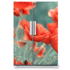 Naklejka na lodówkę - red poppy flowers