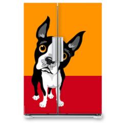 Naklejka na lodówkę - funny illustration of Boston Terrier