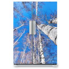 Naklejka na lodówkę - Birchwood