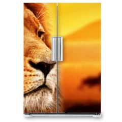 Naklejka na lodówkę - Lion portrait on savanna. Mount Kilimanjaro at sunset. Safari