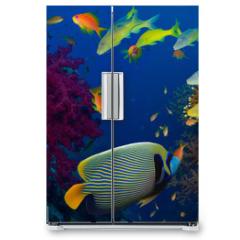Naklejka na lodówkę - Coral and fish