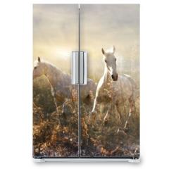 Naklejka na lodówkę - white horse galloping on meadow