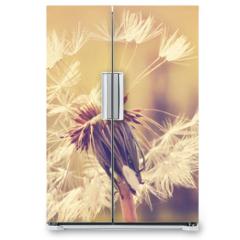 Naklejka na lodówkę - Autumn dandelion close up