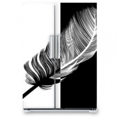 Naklejka na lodówkę - Plume en noir et en blanc