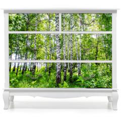 Naklejka na meble - birch grove