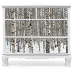 Naklejka na meble - Winter Forest