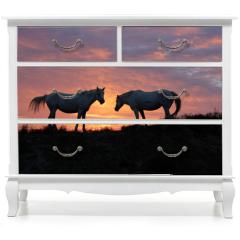 Naklejka na meble - chevaux et lever du soleil